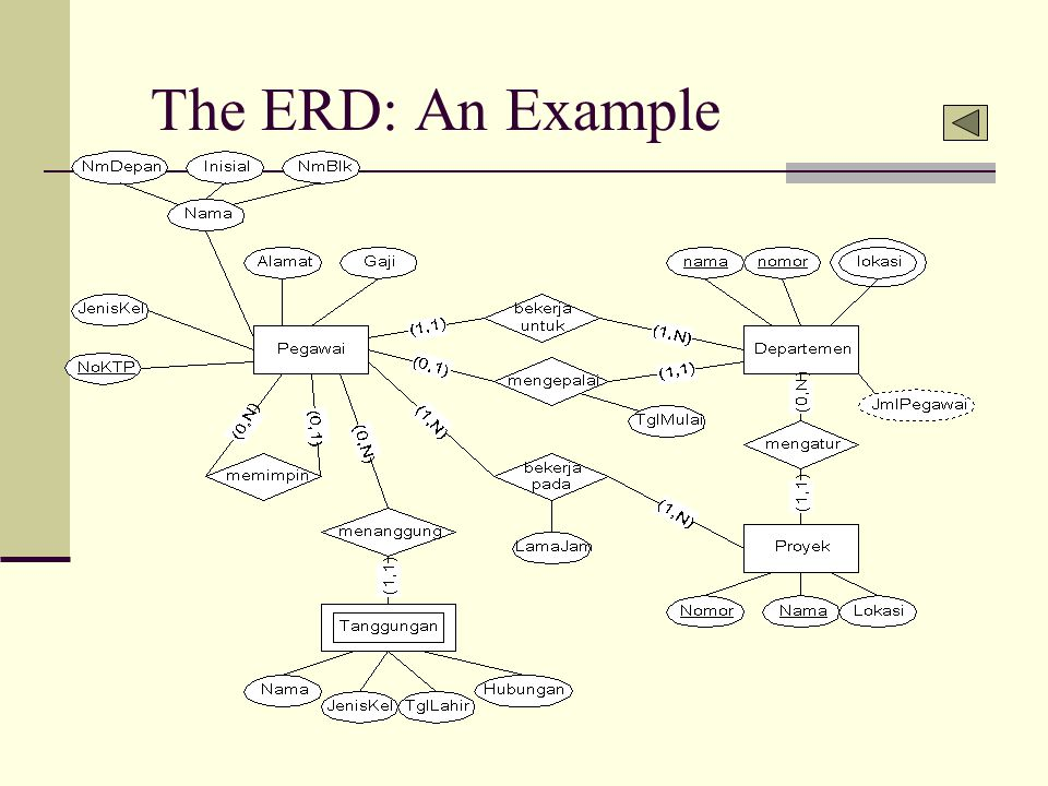 The ERD: An Example