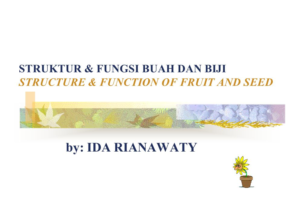 STRUKTUR & FUNGSI BUAH DAN BIJI STRUCTURE & FUNCTION OF FRUIT AND SEED