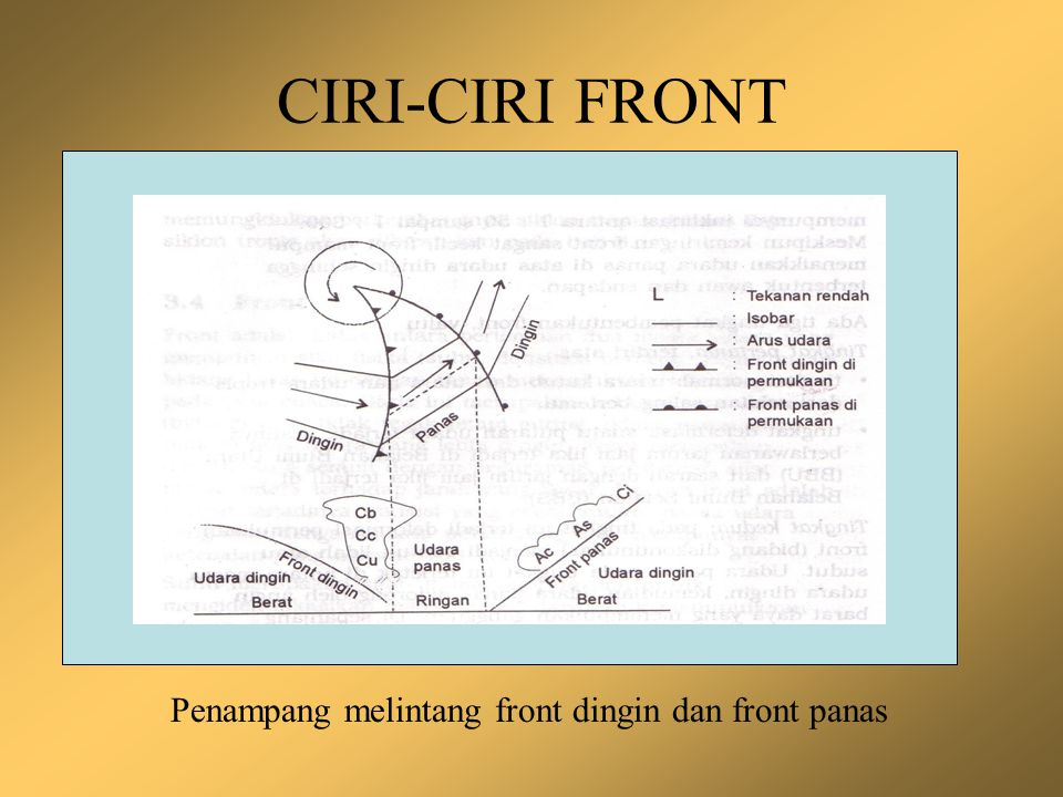 CIRI-CIRI FRONT Penampang melintang front dingin dan front panas