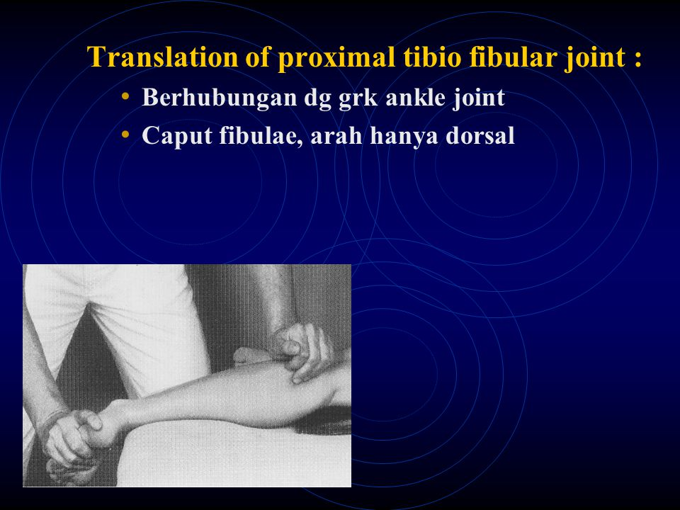 Translation of proximal tibio fibular joint :
