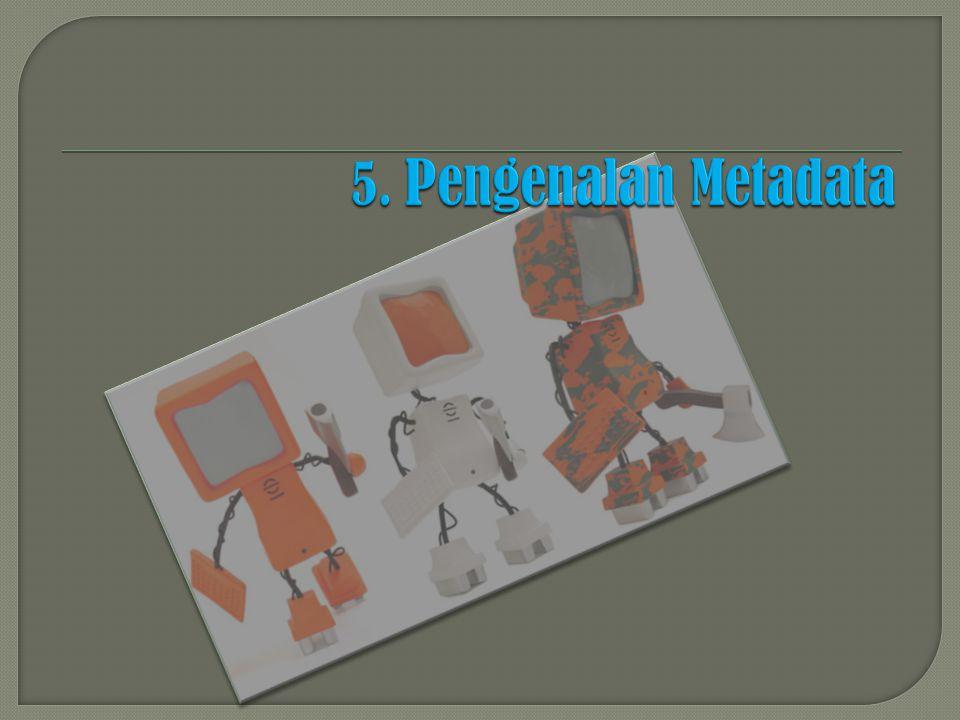 5. Pengenalan Metadata