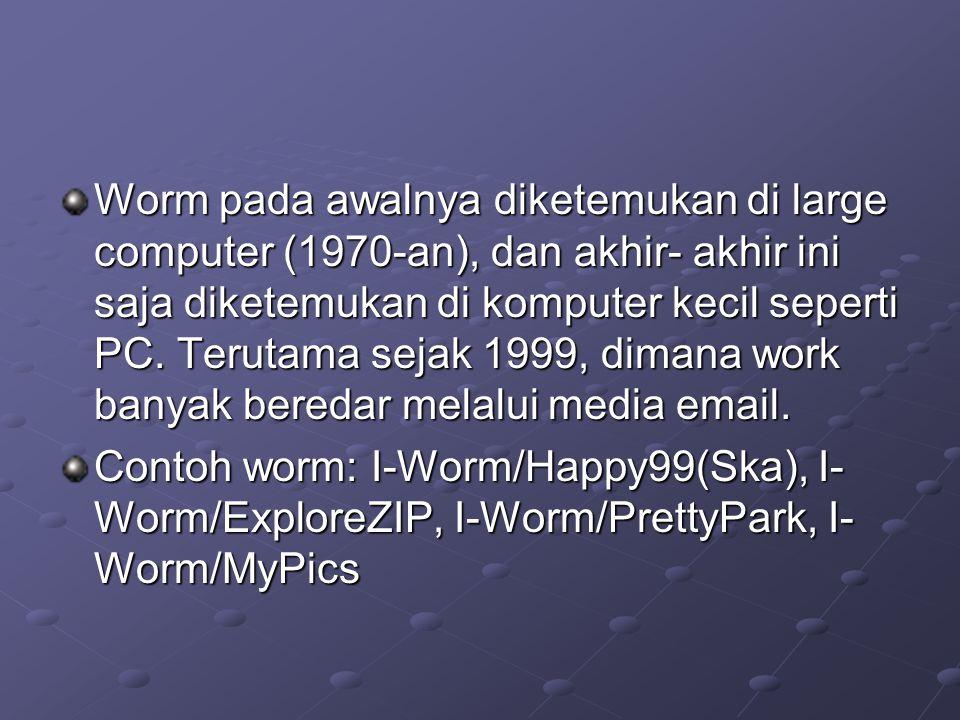 Worm pada awalnya diketemukan di large computer (1970-an), dan akhir- akhir ini saja diketemukan di komputer kecil seperti PC. Terutama sejak 1999, dimana work banyak beredar melalui media email.