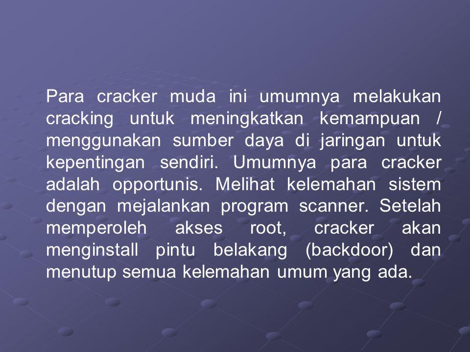 Para cracker muda ini umumnya melakukan cracking untuk meningkatkan kemampuan / menggunakan sumber daya di jaringan untuk kepentingan sendiri.