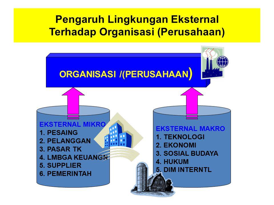 Pengaruh Lingkungan Eksternal Terhadap Organisasi (Perusahaan)