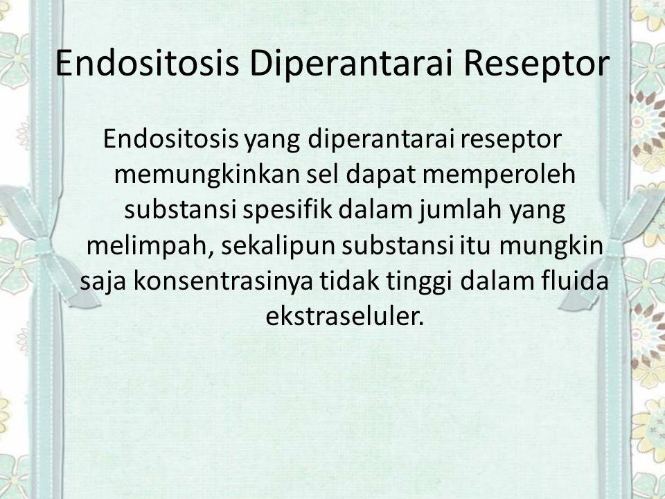 Endositosis Diperantarai Reseptor