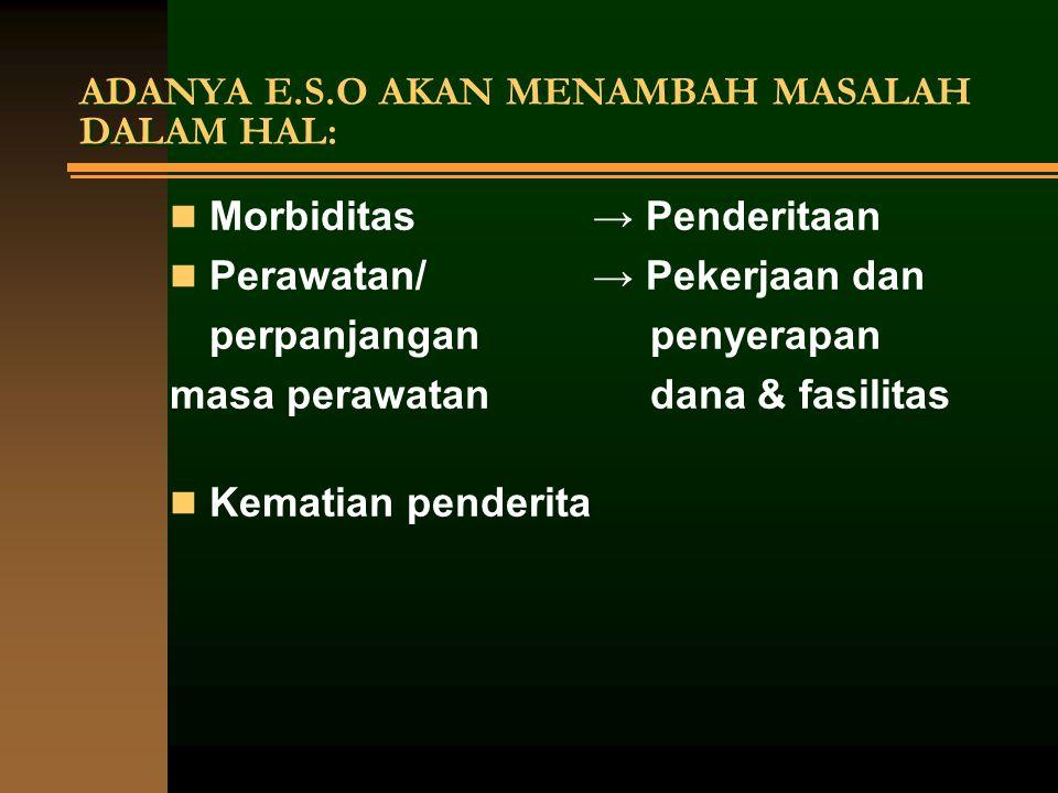 ADANYA E.S.O AKAN MENAMBAH MASALAH DALAM HAL: