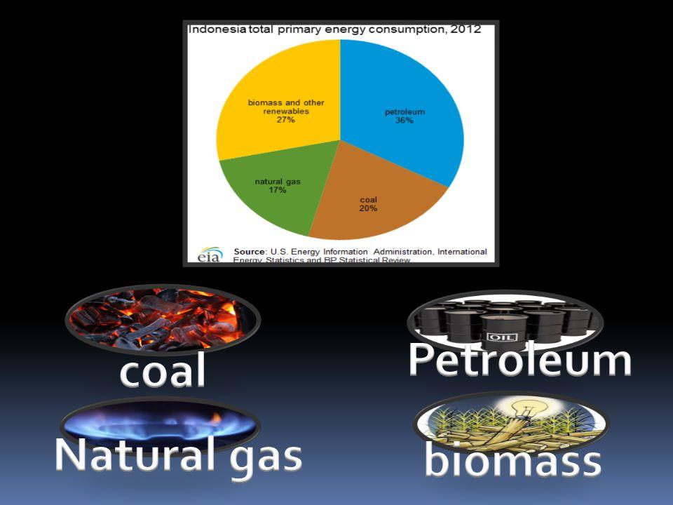 Petroleum coal Natural gas biomass