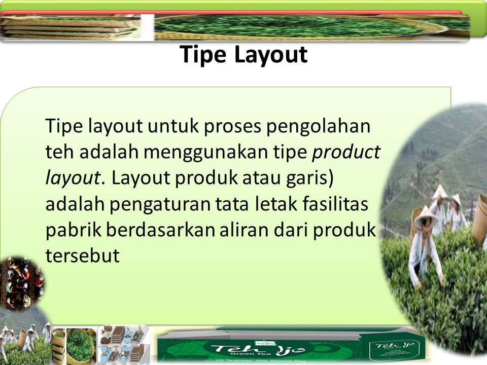 Tipe Layout