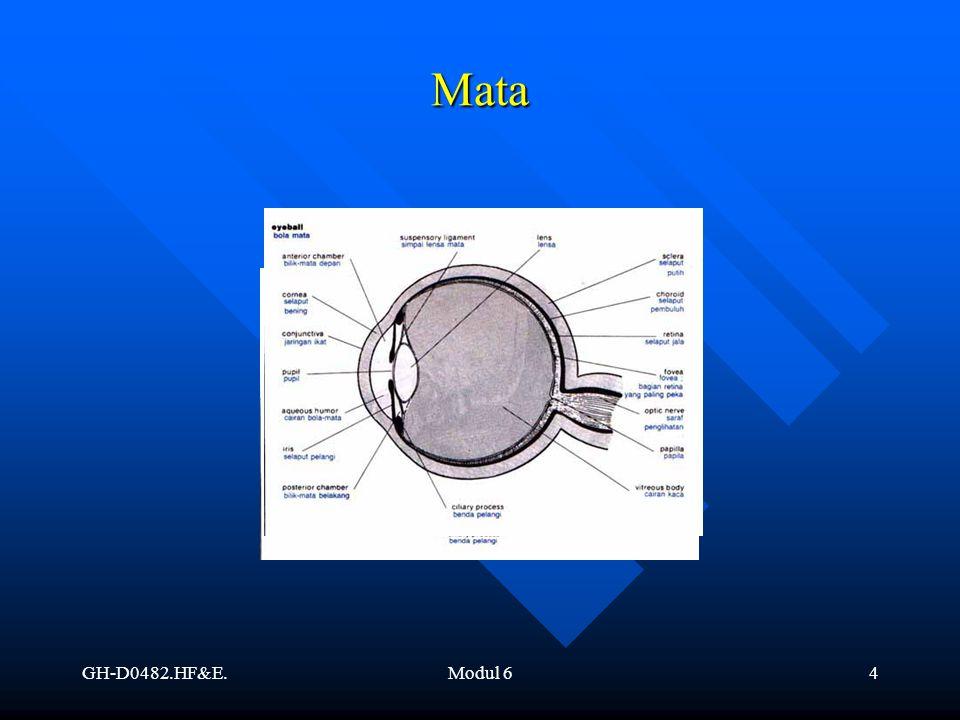 Mata GH-D0482.HF&E. Modul 6