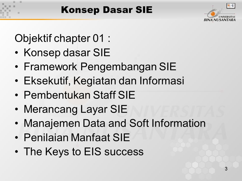 Framework Pengembangan SIE Eksekutif, Kegiatan dan Informasi