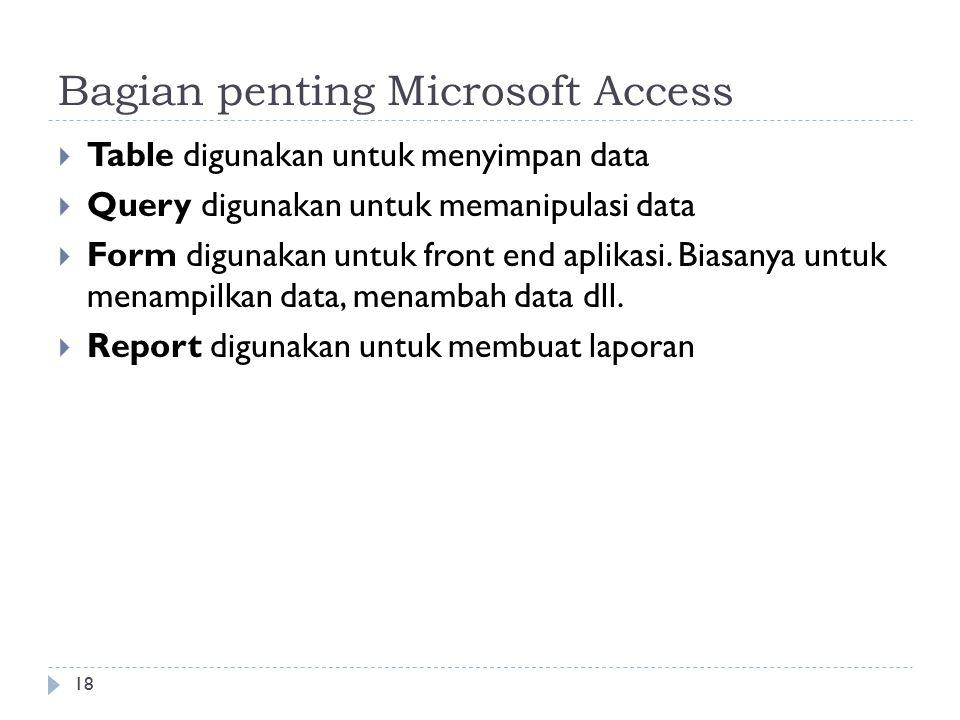 Bagian penting Microsoft Access
