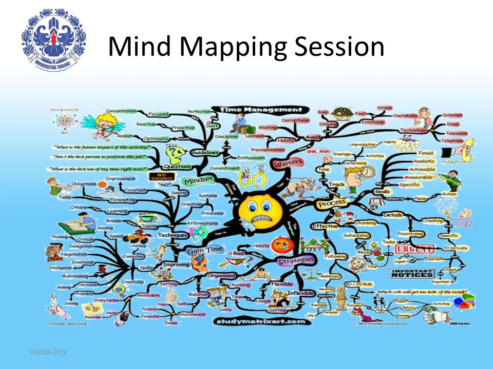 Mind Mapping Session V2008-DEV