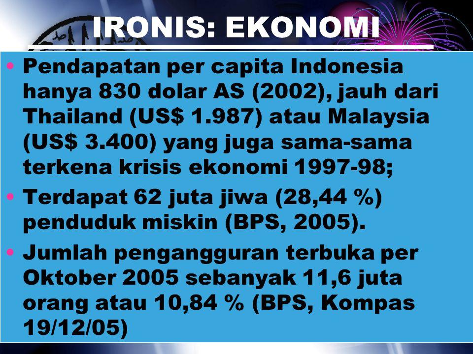 IRONIS: EKONOMI