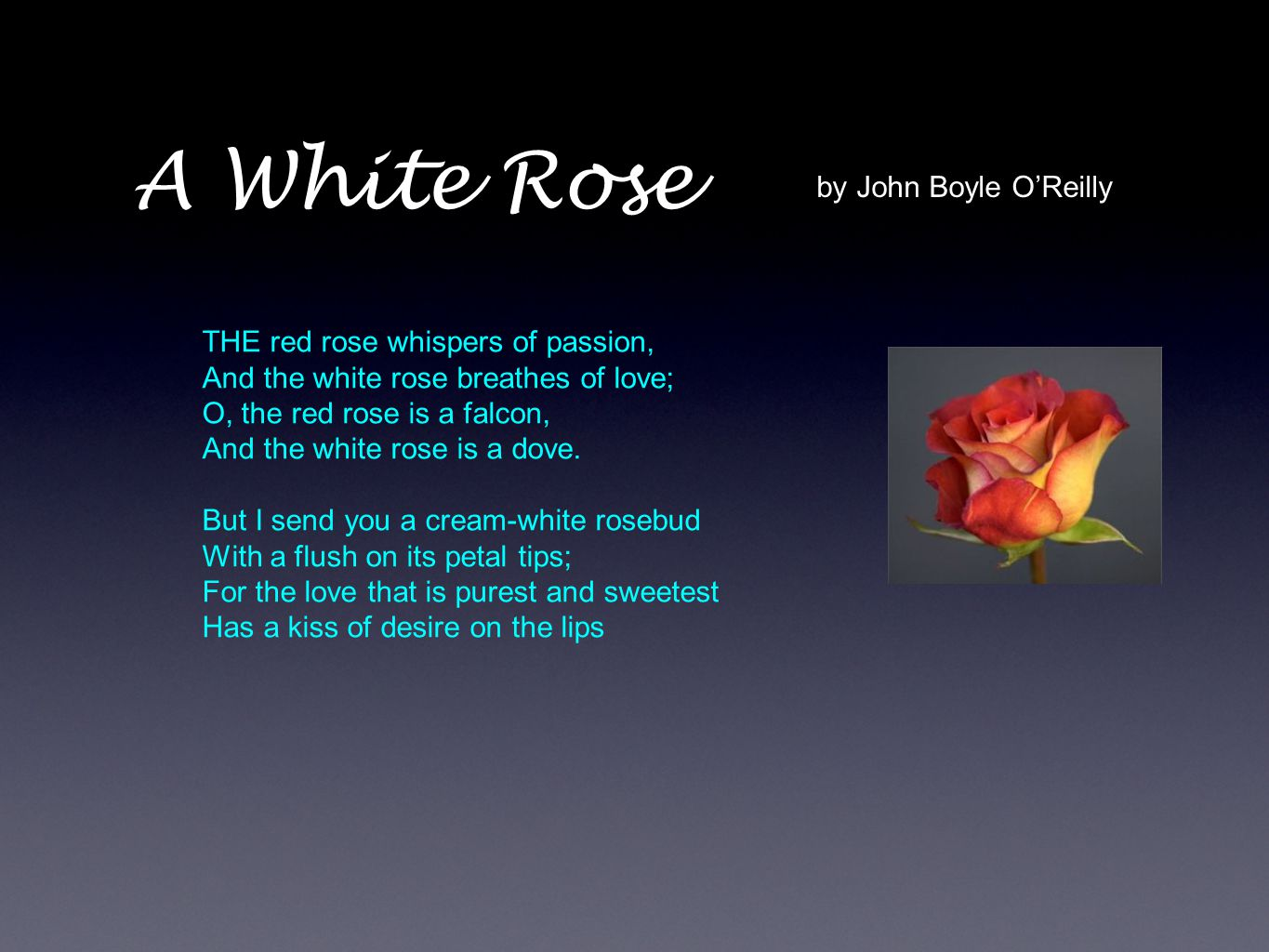 A White Rose by John Boyle O'Reilly THE red rose whispers of passion,