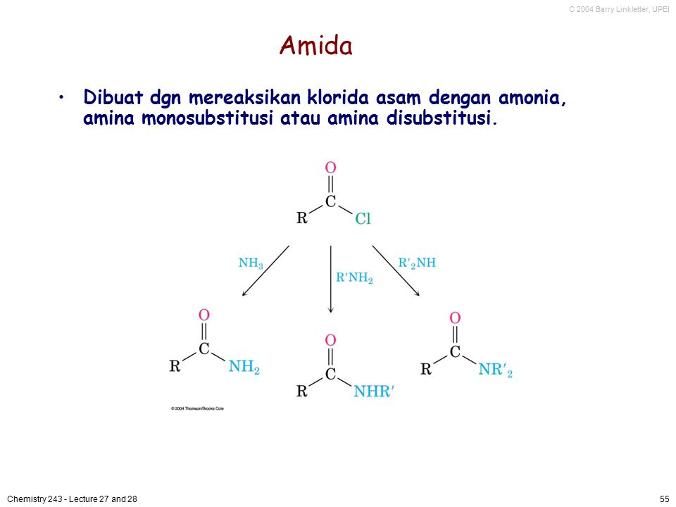 Amida Dibuat dgn mereaksikan klorida asam dengan amonia, amina monosubstitusi atau amina disubstitusi.
