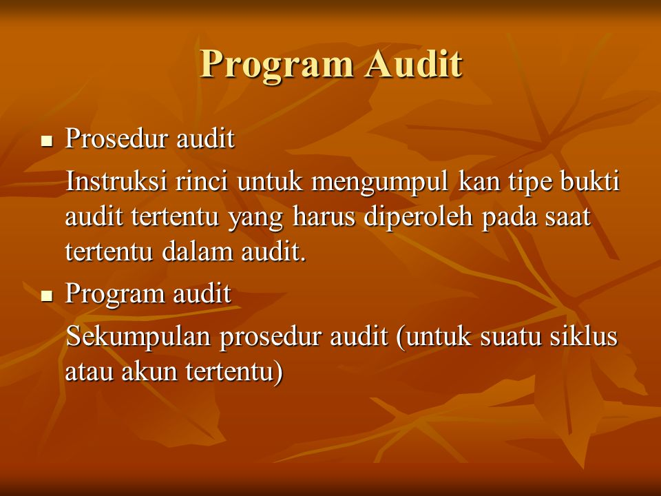 Program Audit Prosedur audit