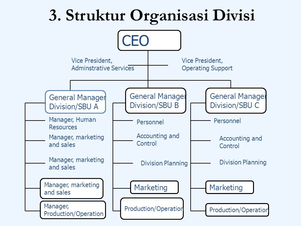 3. Struktur Organisasi Divisi