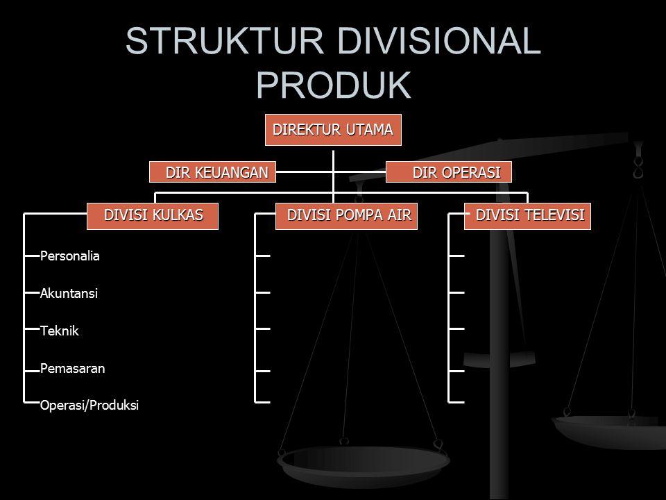 STRUKTUR DIVISIONAL PRODUK