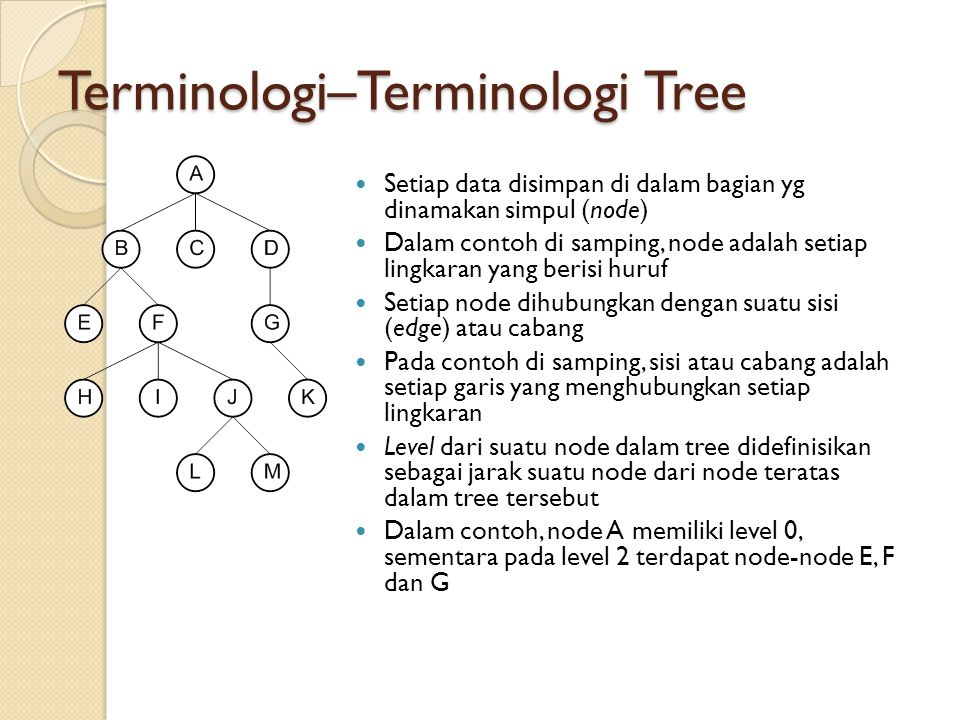 Terminologi–Terminologi Tree