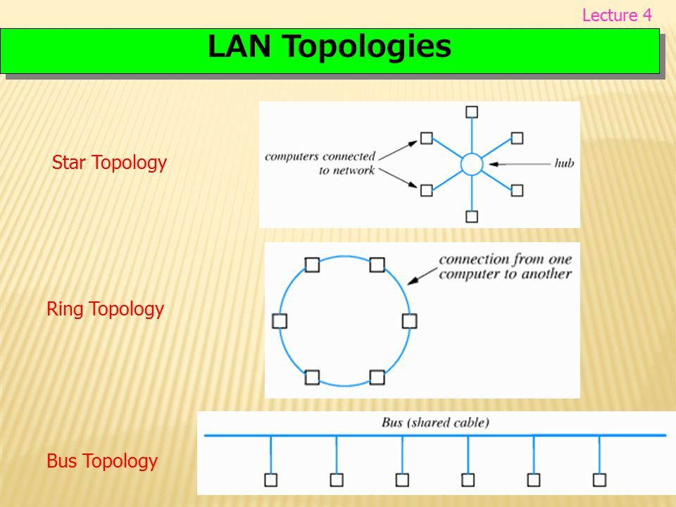 LAN Topologies Star Topology Ring Topology Bus Topology Lecture 4