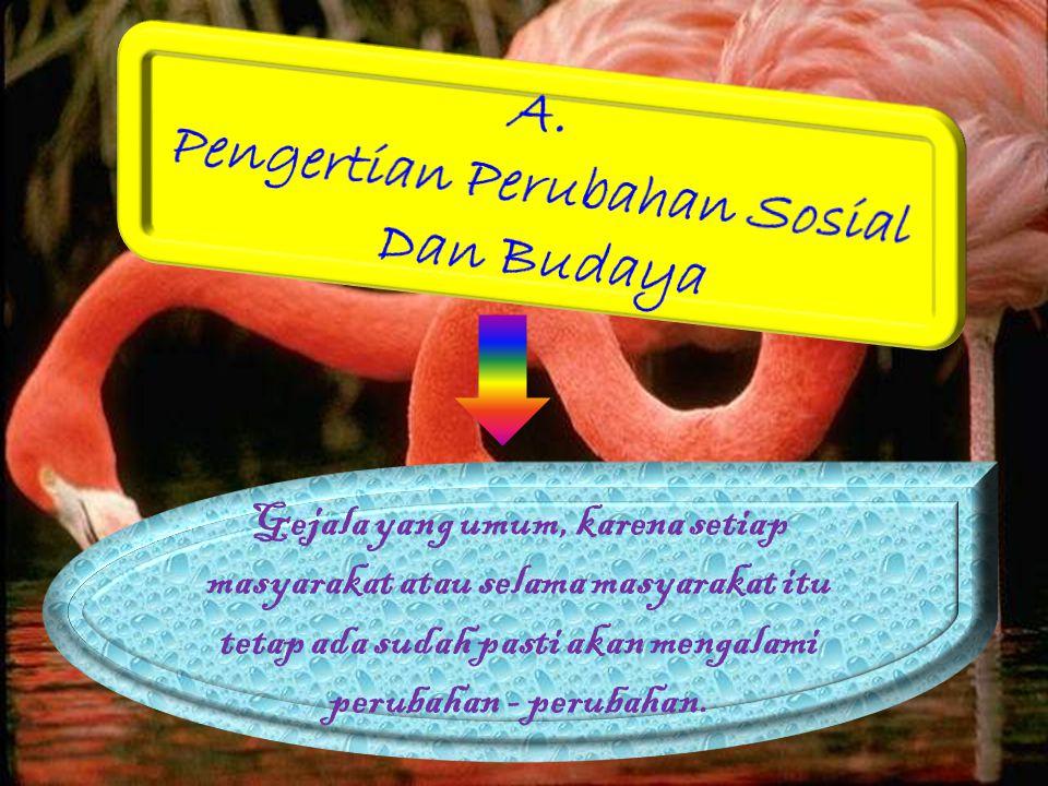 Pengertian Perubahan Sosial Dan Budaya