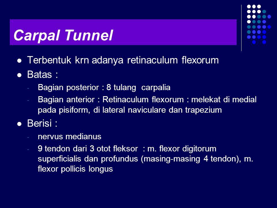 Carpal Tunnel Terbentuk krn adanya retinaculum flexorum Batas :