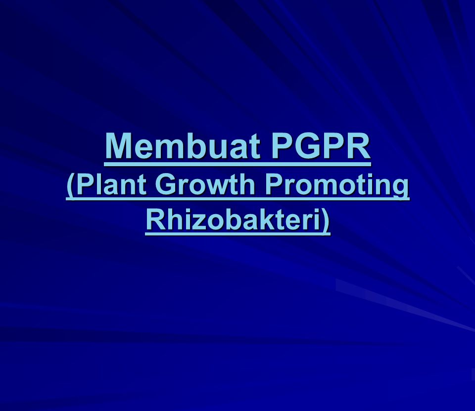 Membuat PGPR (Plant Growth Promoting Rhizobakteri)