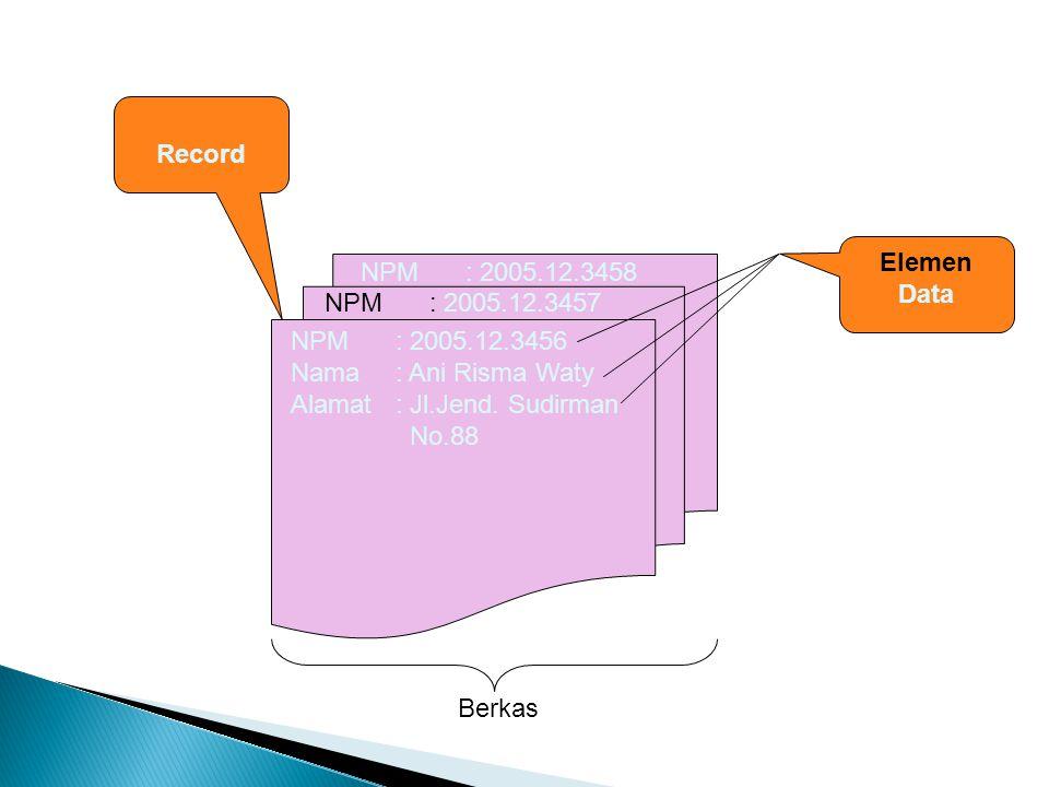 Record Elemen. Data. NPM : 2005.12.3458. NPM : 2005.12.3457. NPM : 2005.12.3456. Nama : Ani Risma Waty.
