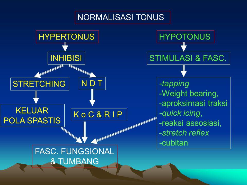 NORMALISASI TONUS HYPERTONUS. HYPOTONUS. INHIBISI. STIMULASI & FASC. STRETCHING. N D T. -tapping.