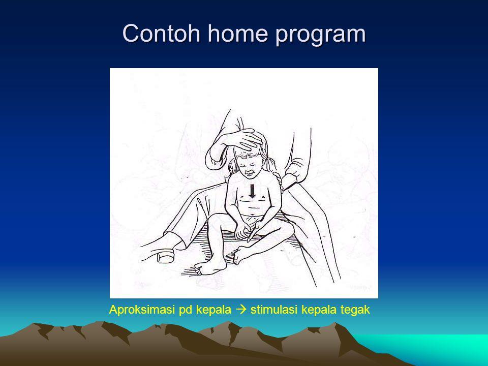 Contoh home program Aproksimasi pd kepala  stimulasi kepala tegak