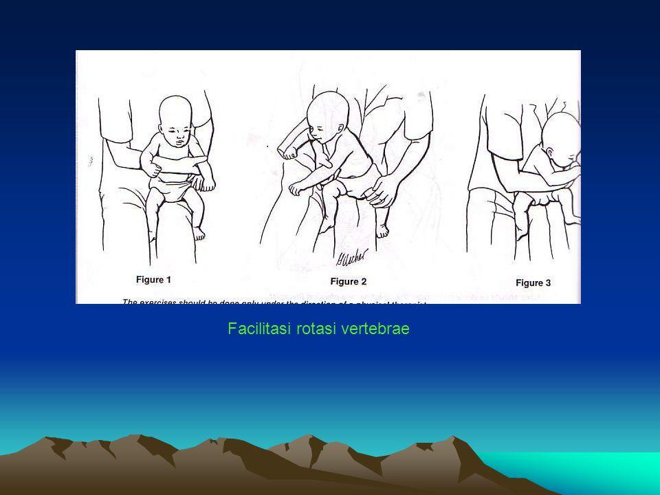Facilitasi rotasi vertebrae