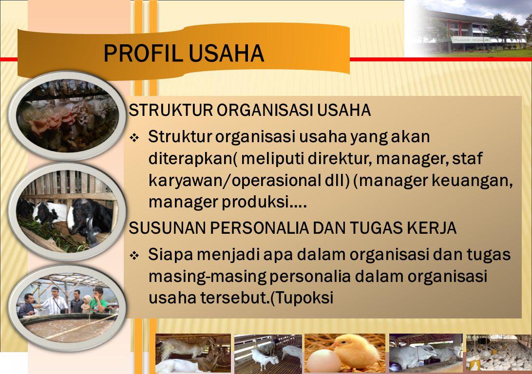 PROFIL USAHA STRUKTUR ORGANISASI USAHA