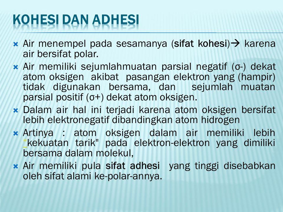 Kohesi dan adhesi Air menempel pada sesamanya (sifat kohesi) karena air bersifat polar.