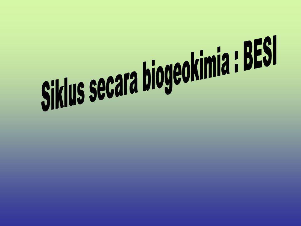 Siklus secara biogeokimia : BESI