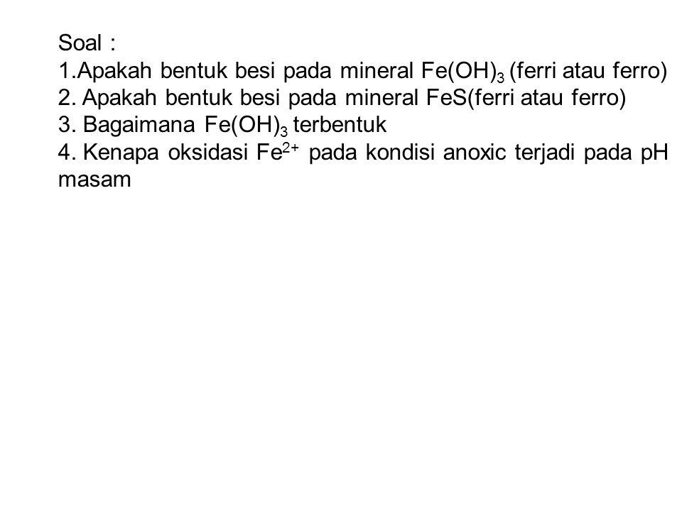 Soal : 1.Apakah bentuk besi pada mineral Fe(OH)3 (ferri atau ferro) 2. Apakah bentuk besi pada mineral FeS(ferri atau ferro)