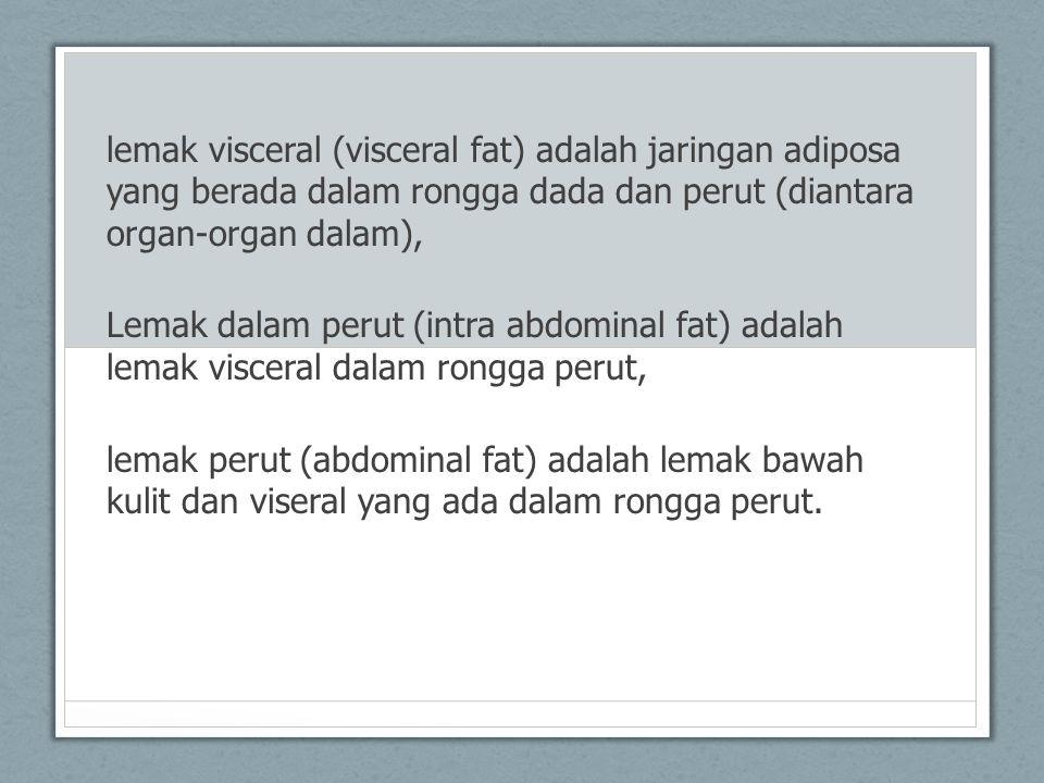 lemak visceral (visceral fat) adalah jaringan adiposa yang berada dalam rongga dada dan perut (diantara organ-organ dalam),