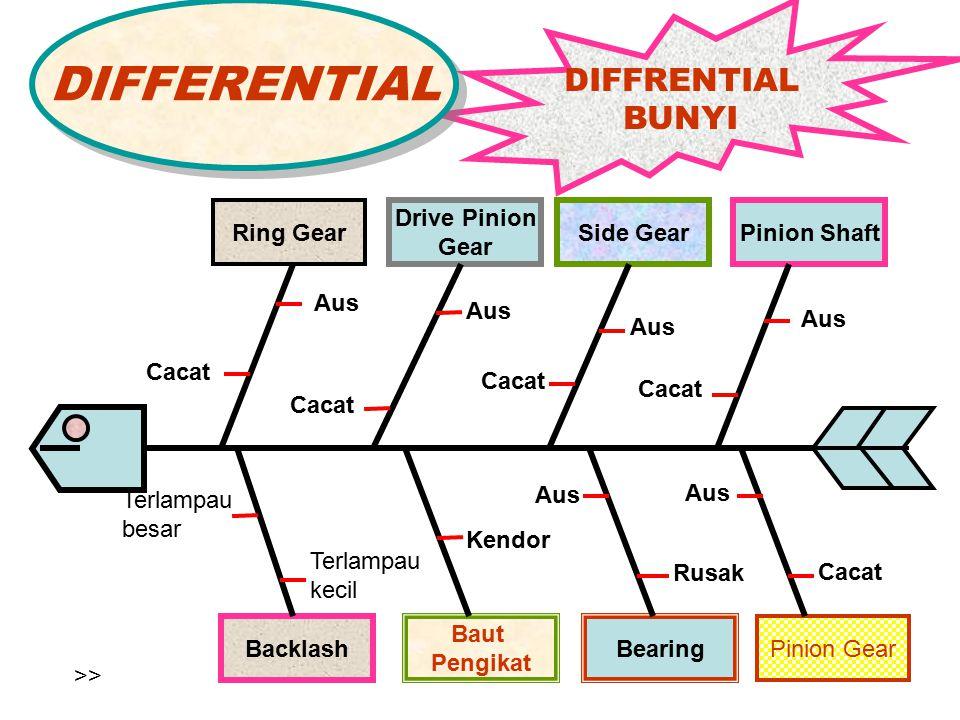 DIFFERENTIAL DIFFRENTIAL BUNYI Ring Gear Drive Pinion Gear Side Gear