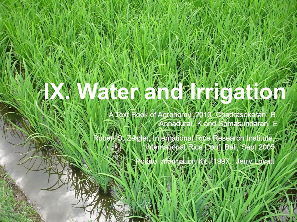 IX. Water and Irrigation
