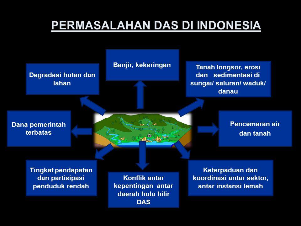 PERMASALAHAN DAS DI INDONESIA