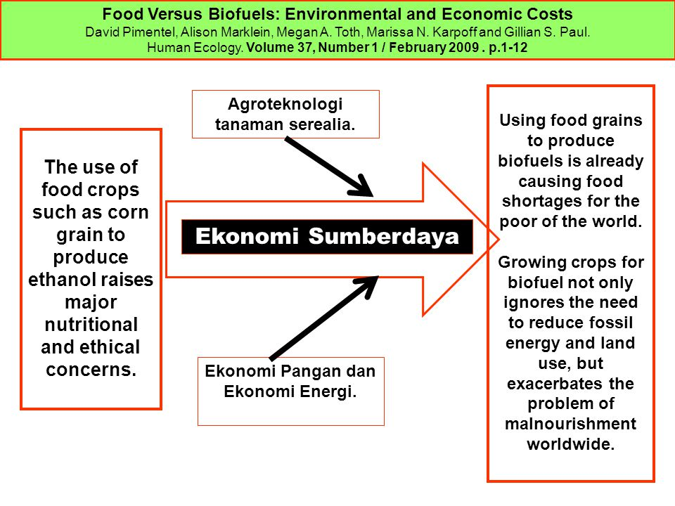 Food Versus Biofuels: Environmental and Economic Costs