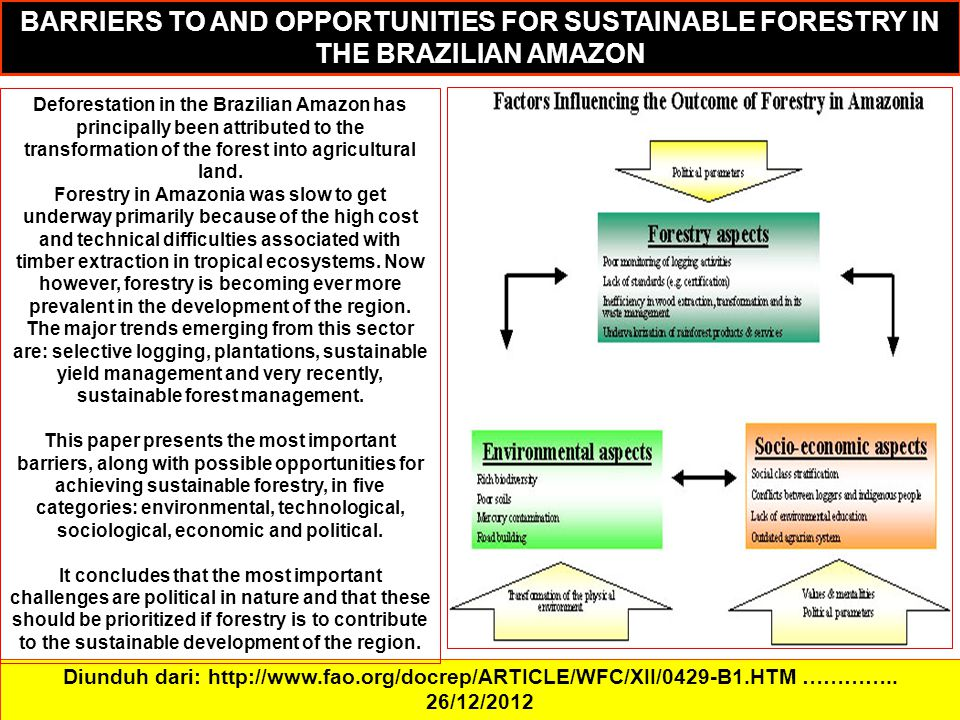 BARRIERS TO AND OPPORTUNITIES FOR SUSTAINABLE FORESTRY IN THE BRAZILIAN AMAZON