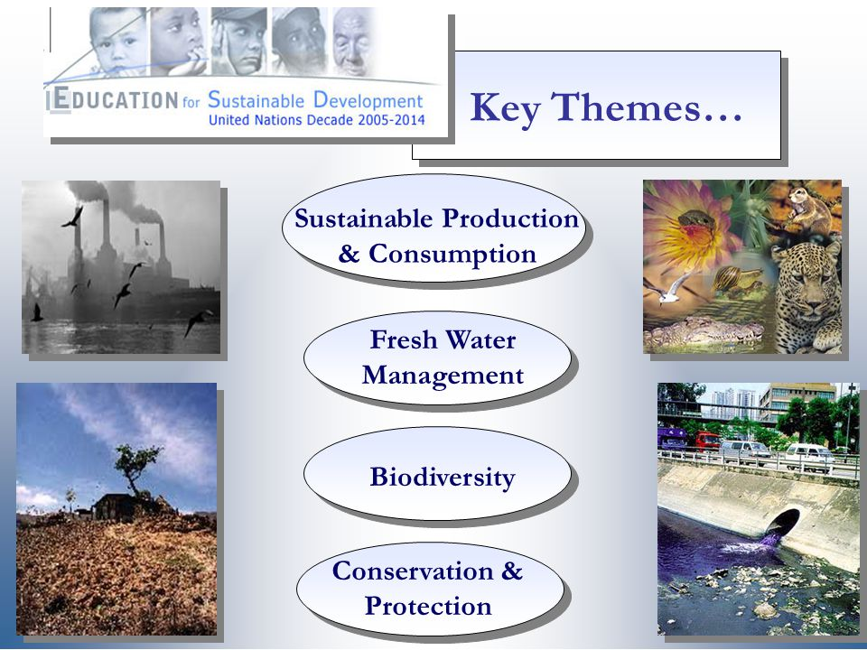 Key Themes… Sustainable Production & Consumption
