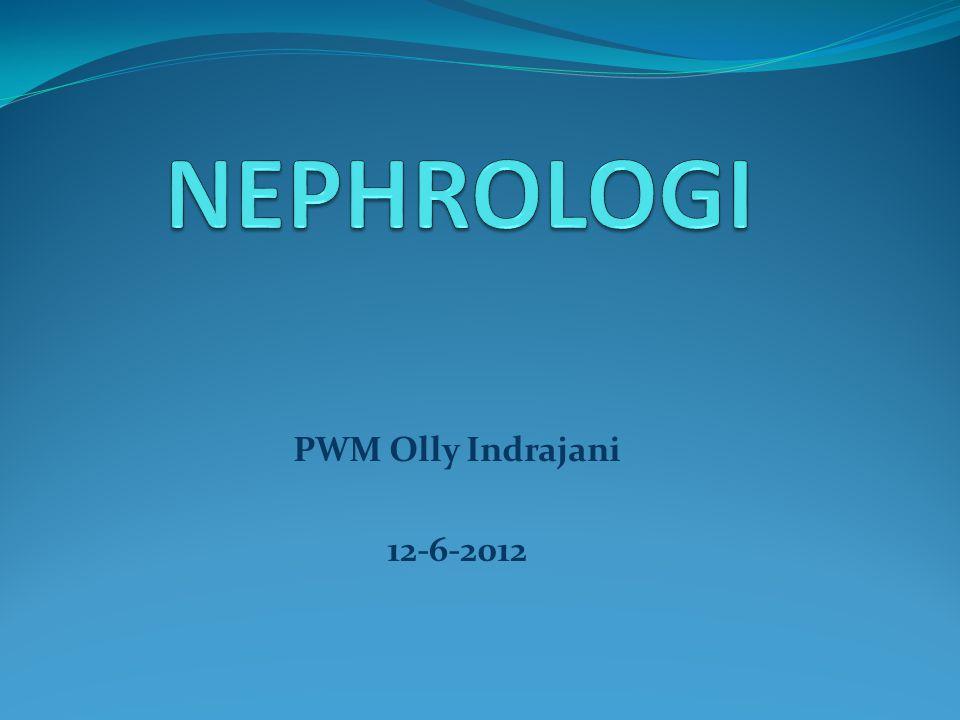 NEPHROLOGI PWM Olly Indrajani 12-6-2012