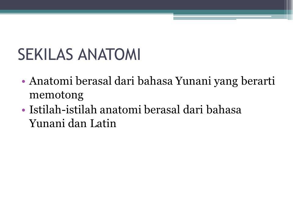 SEKILAS ANATOMI Anatomi berasal dari bahasa Yunani yang berarti memotong.