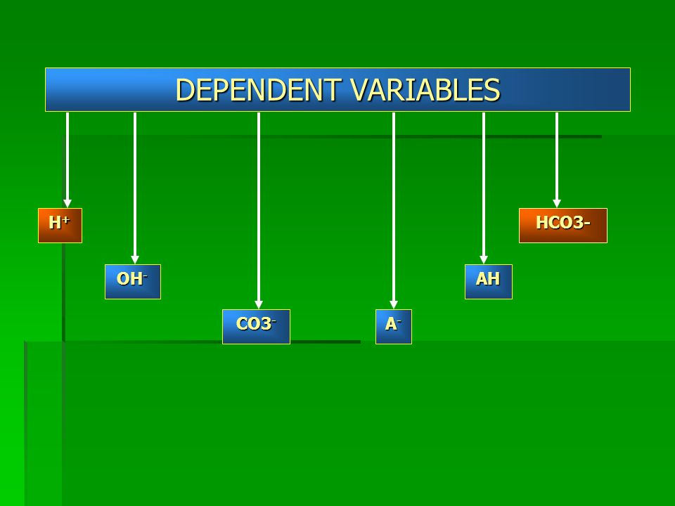 DEPENDENT VARIABLES H+ HCO3- OH- AH CO3- A-