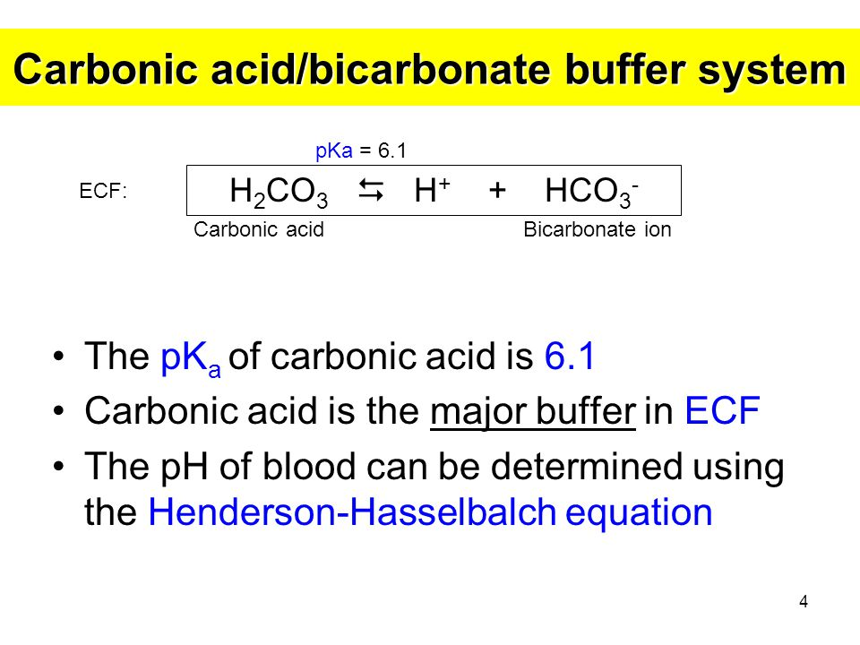 Carbonic acid/bicarbonate buffer system