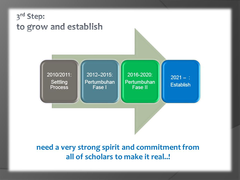 3rd Step: to grow and establish