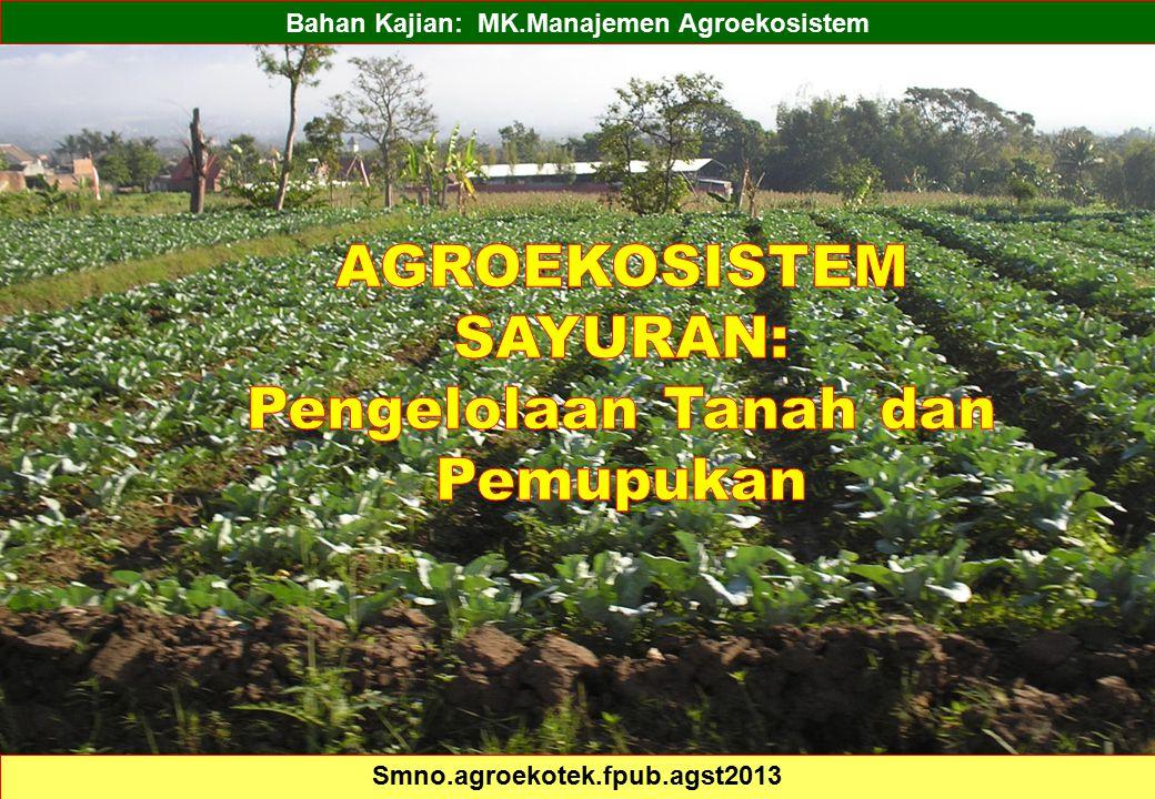 AGROEKOSISTEM SAYURAN: Pengelolaan Tanah dan Pemupukan