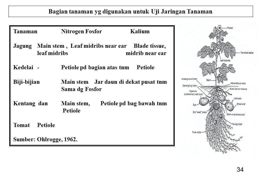 Bagian tanaman yg digunakan untuk Uji Jaringan Tanaman