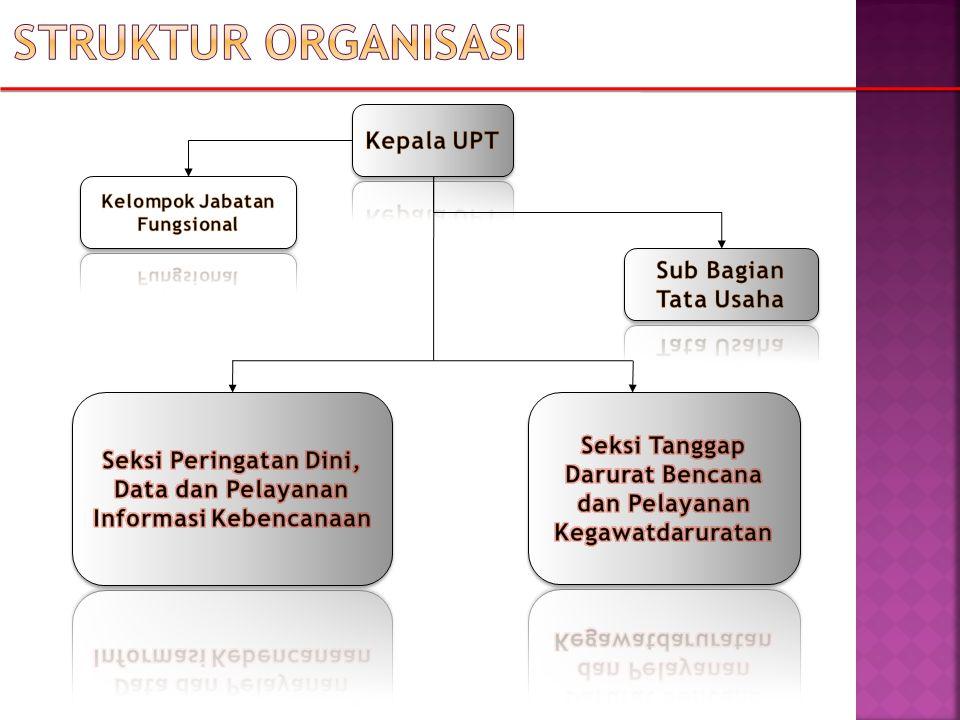 Struktur organisasi Kepala UPT Sub Bagian Tata Usaha